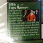 antonio fernandez flamenco